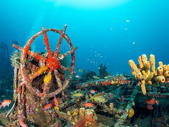 Epave de bateau en Martinique