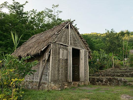 Savane des esclaves en Martinique